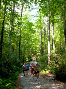 Cross Country Running Trails in Blue Ridge Mountains